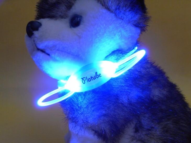 Hondenhalsband Met Licht : Kleurrijke en lichtgevende hondenhalsband led verlichting